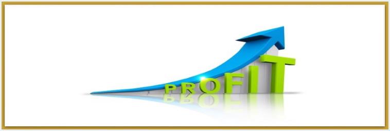 Management Consulting Profit Value Enhancement Chicago Business Valuation